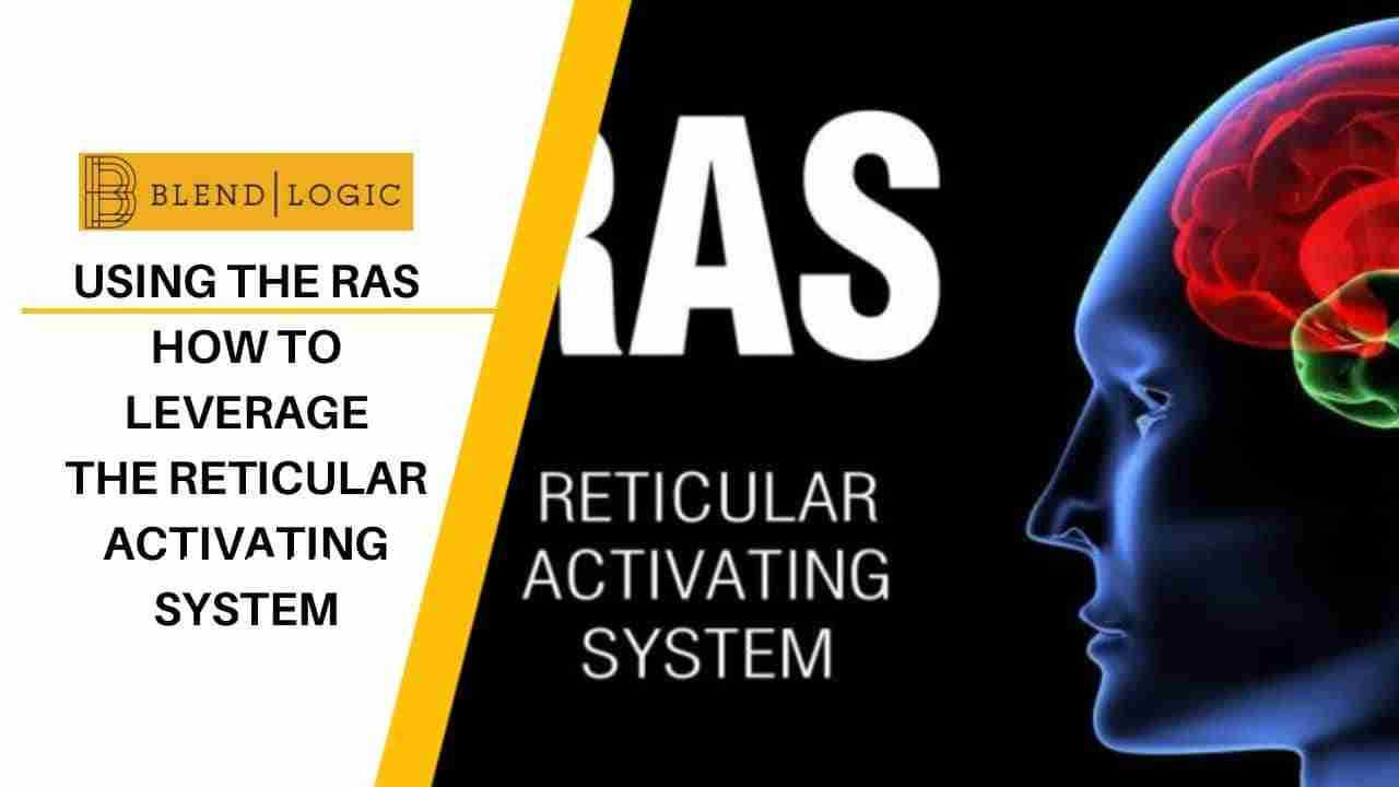 Reticular Activating System Raise Your Focus Blendlogic